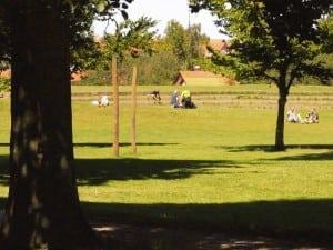 Katrine i parken