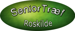 logo seniortræf