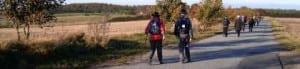 Pilgrimsvandring i Roskilde