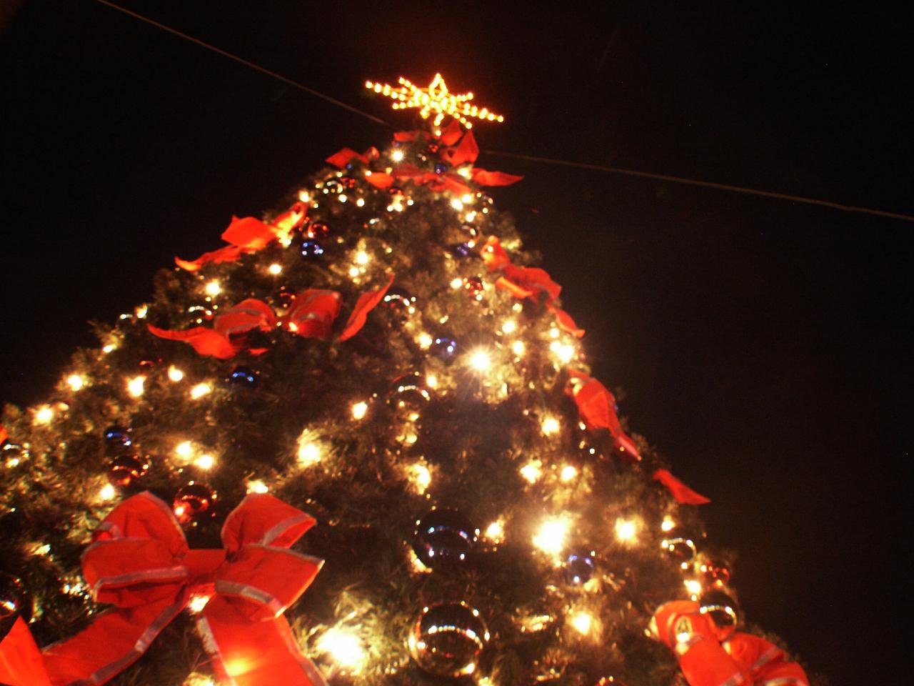 Juletræet tændes på Stændertorvet