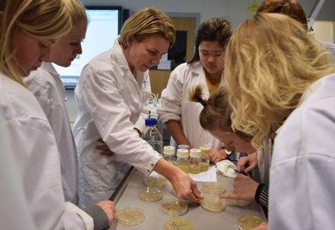 Talenter med forskerpotentiale