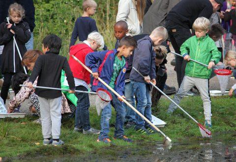 Som en del af Roskilde Naturvidenskabsfestival var 250 1.klasseselever mandag på Boserupgård Naturcenter i Boserup Skov for blandt andet at finde dyr i vandhullet og løbe om kap med skovens dyr.