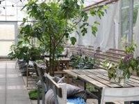 Sankt Hans Have vinder den Socialøkonomiske Pris