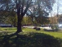 Haven i Sankt Ols Stræde åben for alle