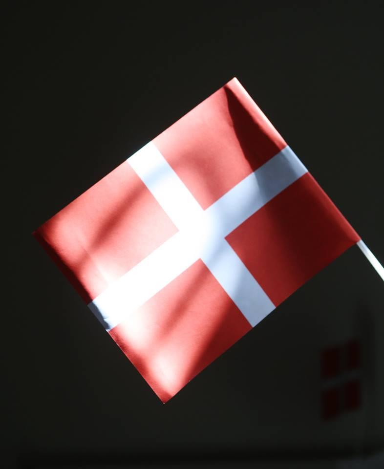 Invitation til Grundlovsceremoni i Roskilde den 11. marts 2021