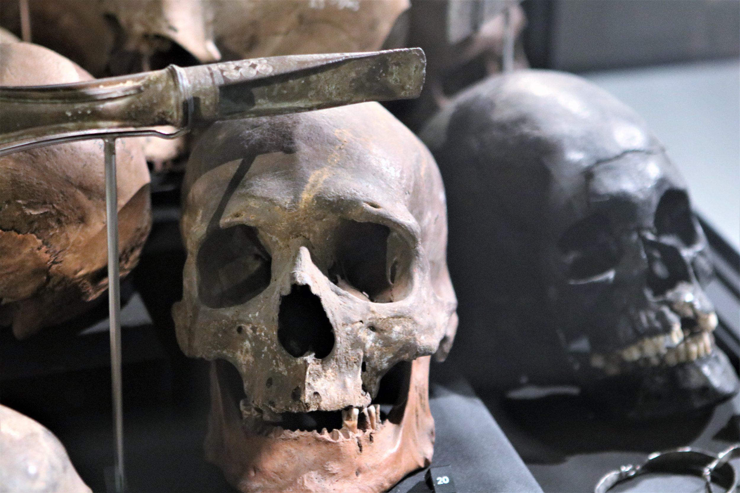 På sporet af Roskildes historie: Var han en halshugget sørøver?