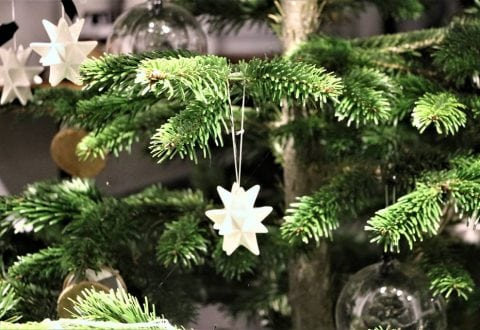 Julen indtages