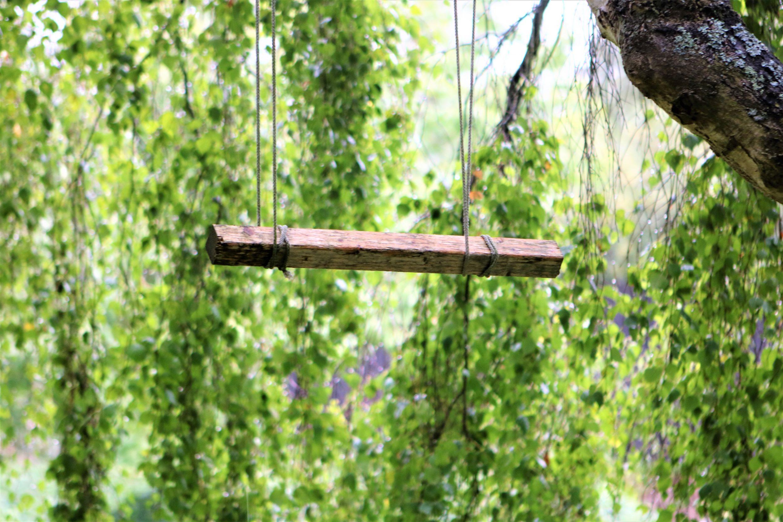 Naturen Er Verdens Bedste Legeplads Dit Roskilde