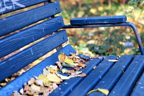 Efteråret tager over