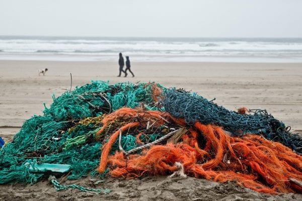 EU kommer havdyrene til undsætning