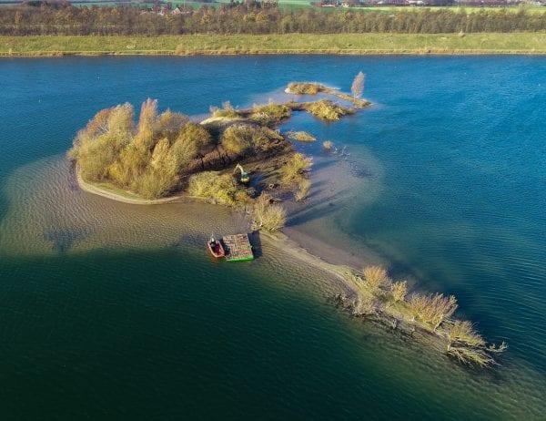 Træfældning på Himmelsøen