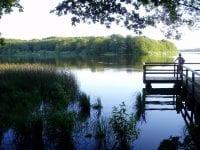 Den nye infrastruktur i Naturpark Åmosen tilbyder de besøgende en tur gennem hele Danmarkshistorien fra stenalder over vikingetid og middelalder frem til nutiden. Foto: Formidlingscenter Fugledegård