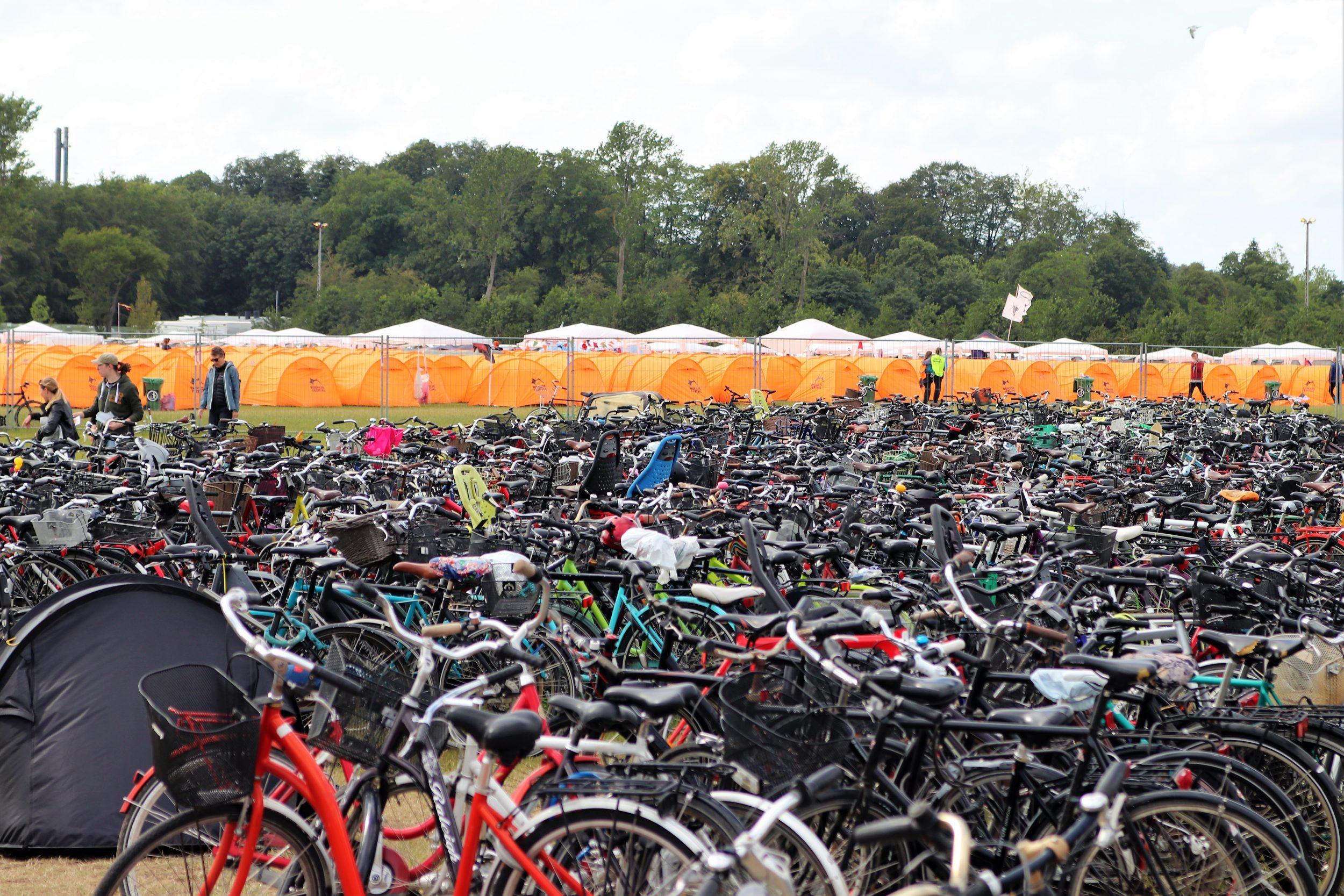 Fortællinger fra Roskilde Festival