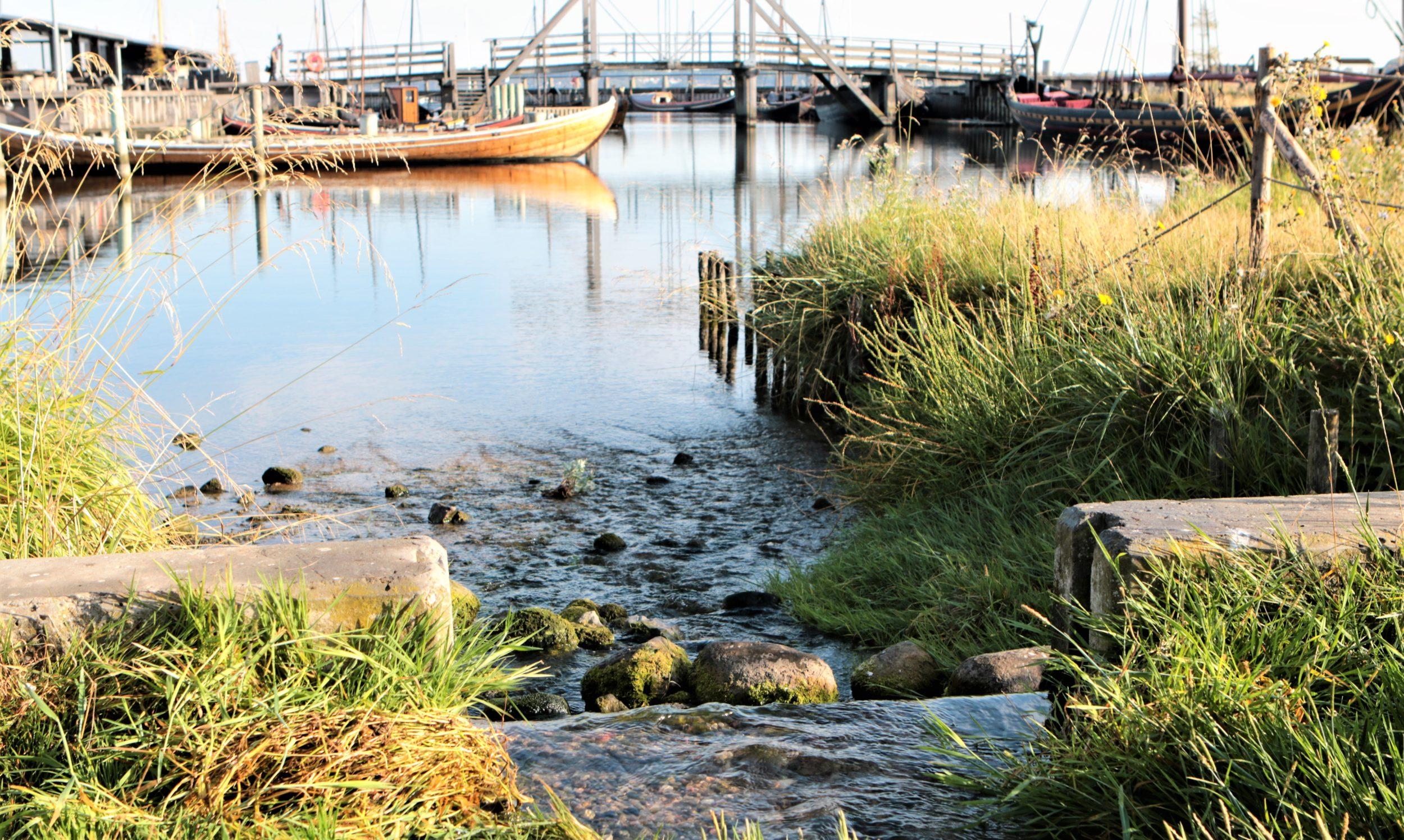 Varme Roskilde vågner op