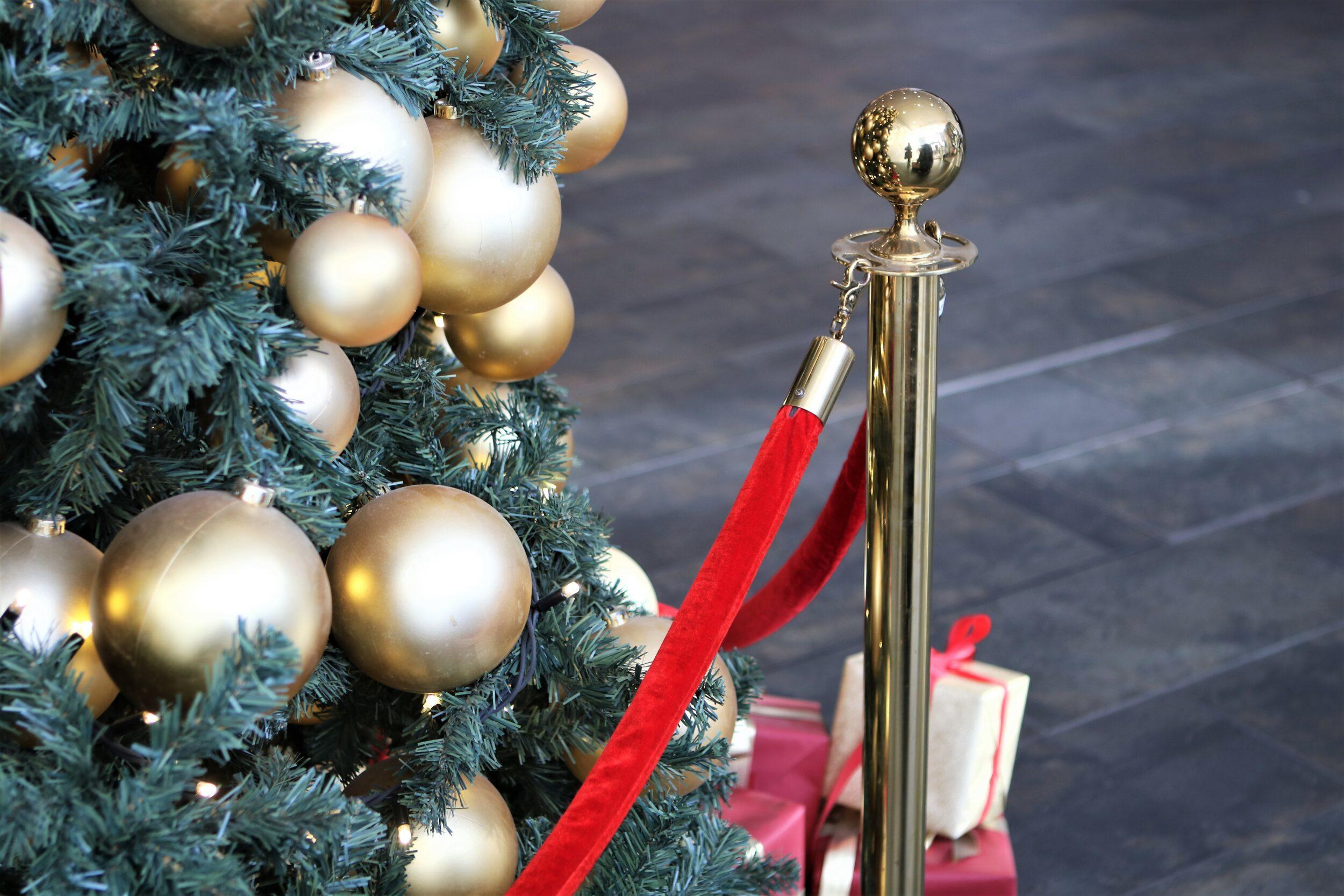 Baldonis julecirkus kommer til Roskilde