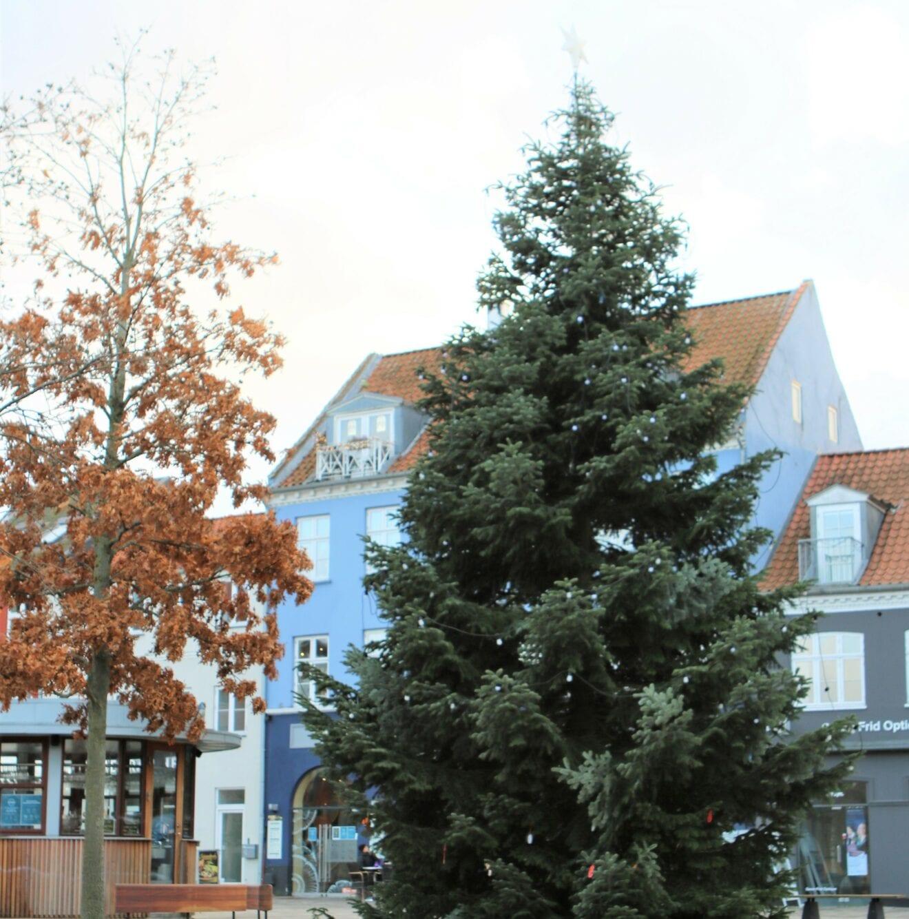 Juletræet er klar