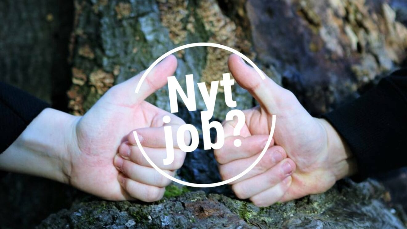 Rådgiver søges til Børneafsnittet i Roskilde Kommune