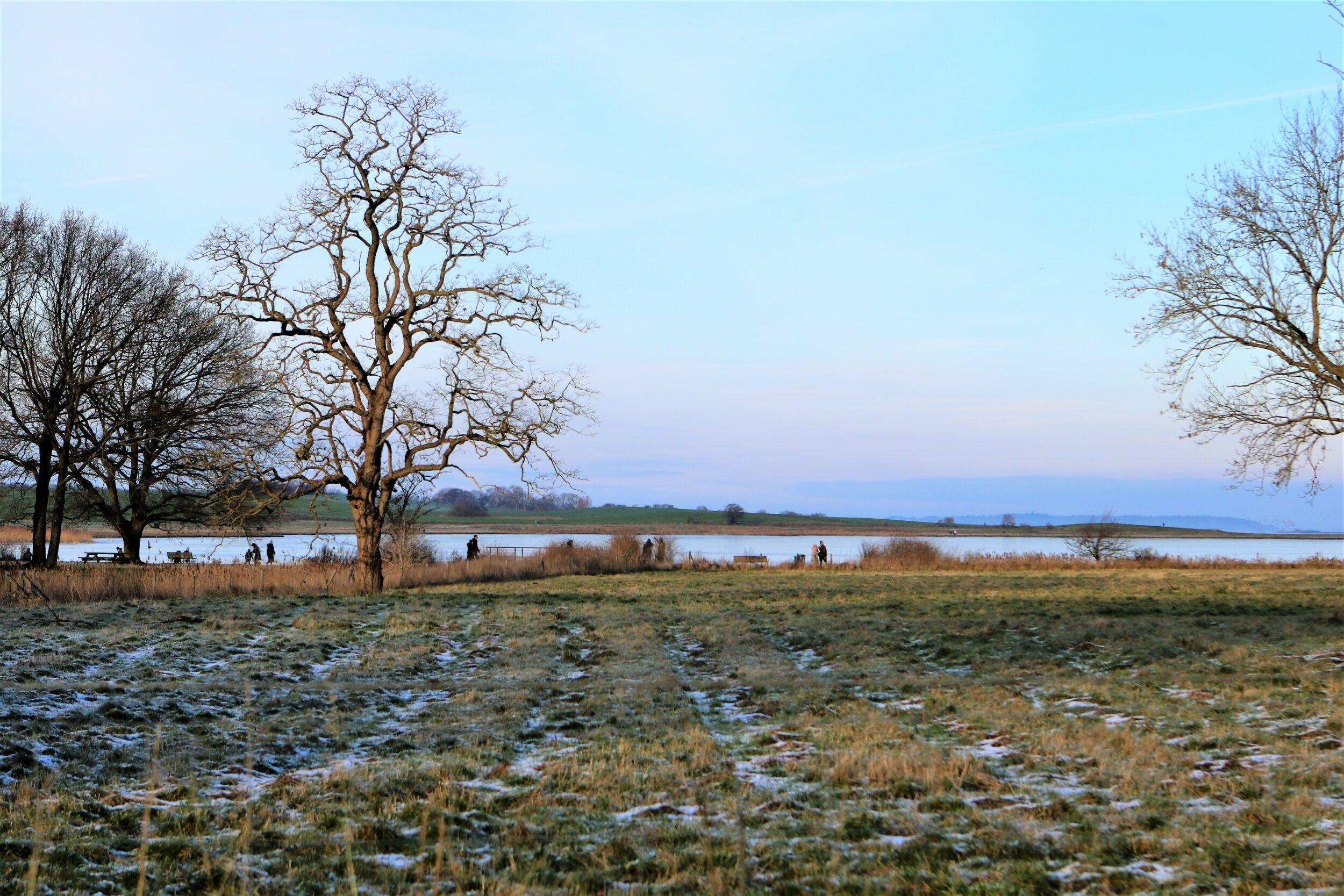 Den billedskønne frost