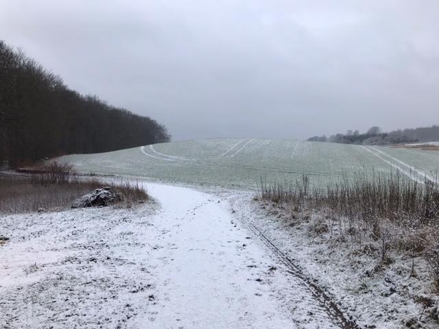 Vinterens udsigt