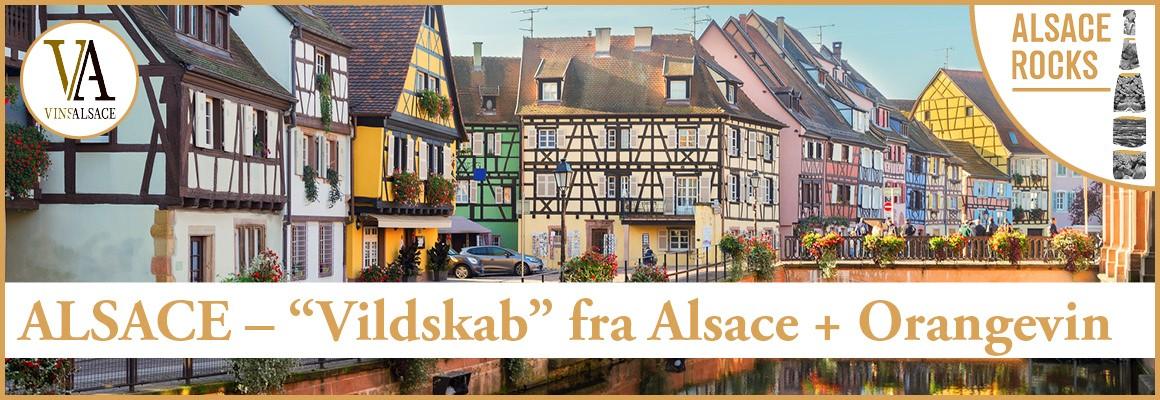 """""""Vildskab"""" fra Alsace!"""
