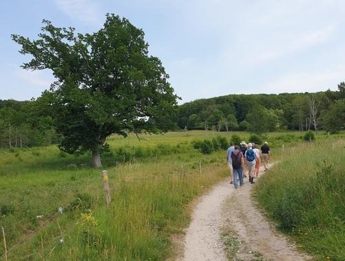 Ny vandrerute fra Roskilde Fjord til Øresund