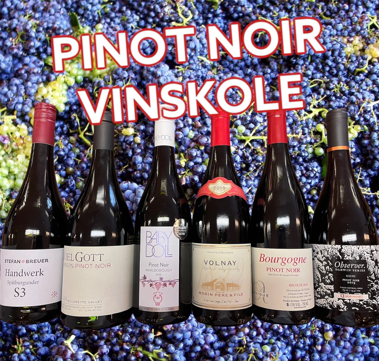Pinot Noir Vinskole
